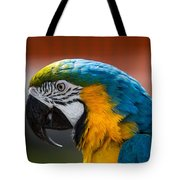 Macaw Tropical Bird Tote Bag