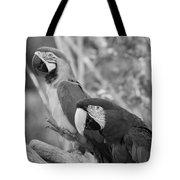 Macaws Of Color B W 14 Tote Bag