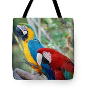 Macaws Of Color23 Tote Bag