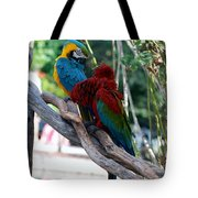 Macaws Of Color24 Tote Bag