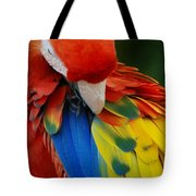 Macaws Of Color25 Tote Bag
