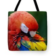 Macaws Of Color26 Tote Bag
