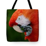 Macaws Of Color32 Tote Bag