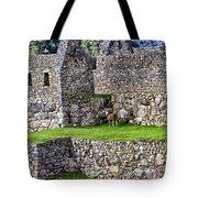 Machu Picchu - Grazing Lamas Tote Bag