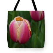 Mackinac Tulip 10386 Tote Bag