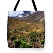 Mackinder's Valley Tote Bag