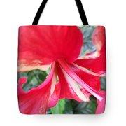 Macro Beauty Tote Bag