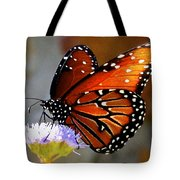Macro Butterfly Tote Bag