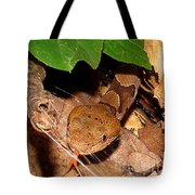 Macro Copperhead Tote Bag