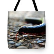 Macro  Millipede Tote Bag