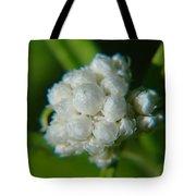 Macro Of A White Bulb Tote Bag
