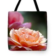Macro Orange And Pink Floribunda Rose Tote Bag