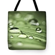 Macro Raindrops On Green Leaf Tote Bag