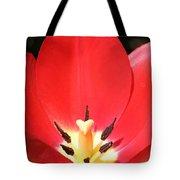 Macro Tulip 2 Tote Bag