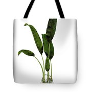 Macrotaeniopteris Prehistoric Plant Tote Bag