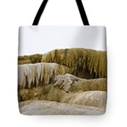Madison Formation Panorama  16x123 Tote Bag