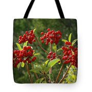 Madrone Berries Tote Bag