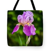 Magenta Iris Profile Tote Bag