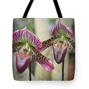 Magenta  Lady Slippers Tote Bag