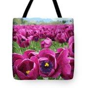 Magenta Tulips Tote Bag