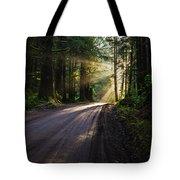 Magic Of Redwood Tote Bag