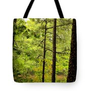 Magic Of The Golden Forest Tote Bag