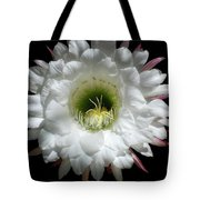 Magic Of The Night Tote Bag