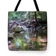 Magic Pool Tote Bag