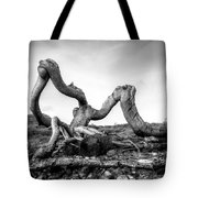 Magic Tree Tote Bag