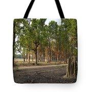 Magical Kanha Tote Bag