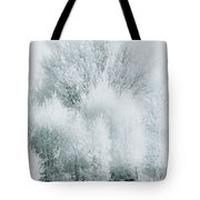Magical Snow Palace Tote Bag