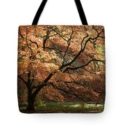 Magnificent Autumn Tote Bag by Anne Gilbert