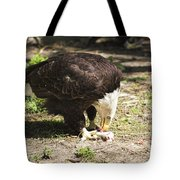 Magnificent Bald Eagle Breakfast Tote Bag