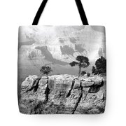 Magnificent Grand Canyon Tote Bag