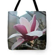 Magnificent Magnolia Blossom Tote Bag