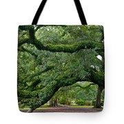 Magnificent Oak Alley Tree Tote Bag