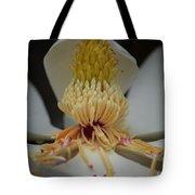 Magnolia 14-4 Tote Bag