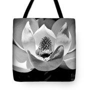 Magnolia Bloom 2bw Tote Bag