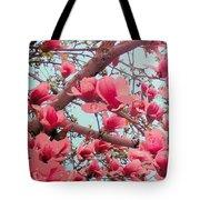 Magnolia Blossoms In Spring Tote Bag