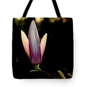 Magnolia Candle Tote Bag