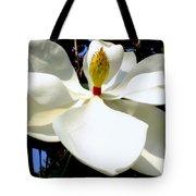 Magnolia Carousel Tote Bag