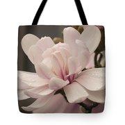 Magnolia Dream Tote Bag