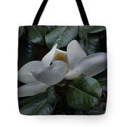 Magnolia In Full Bloom Tote Bag