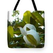 Magnolia Pair Tote Bag