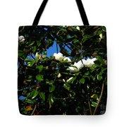 Magnolia Setting Tote Bag