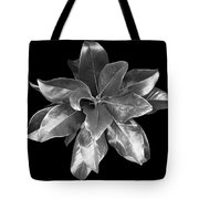 Magnolia Tree Leaves Tote Bag