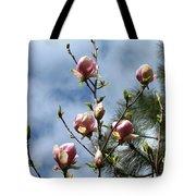 Magnolias In Bud Tote Bag