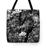Magnolias In White Tote Bag
