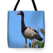 Magpie Goose Tote Bag
