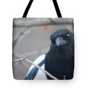 Magpie Portrait Tote Bag